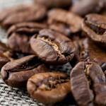 Кофе в зернах Никарагуа Марагоджип, уп. 1 кг от магазина Все чаи